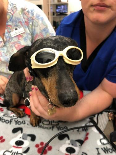 Patient-recieving-laser-therapy.-e1587152457553